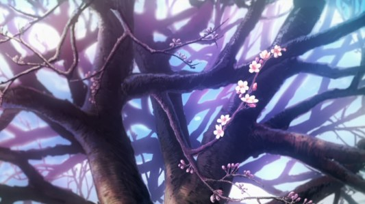 sakurasou_no_pet_na_kanojo-22-spring-cherry_blossoms-blooming-flowers-pink-sakura-cold-morning